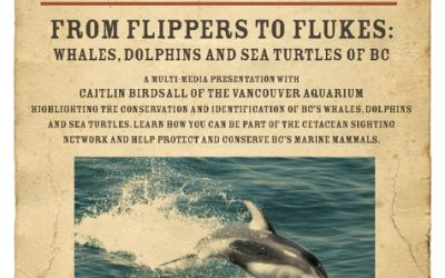 Flippers to Flukes