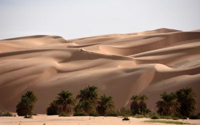 From Dunes to Palms – a West Africa Adventure