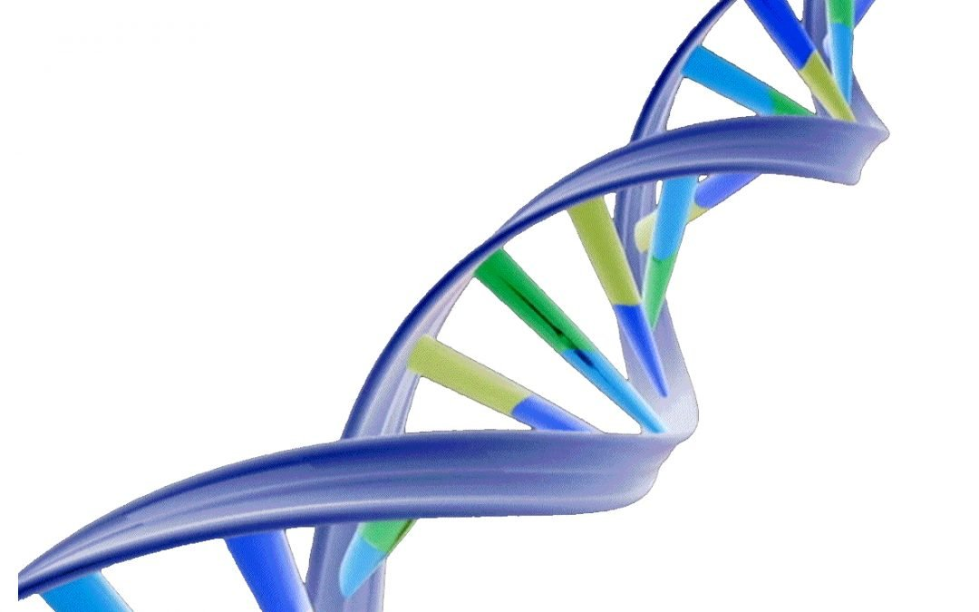 Our Common Thread: DNA